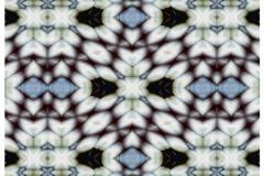 06_2016WP38_Design V