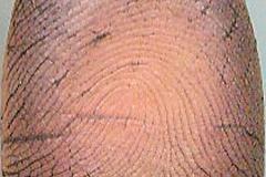 RightForefingerDated5-4-2006and5-5-2006